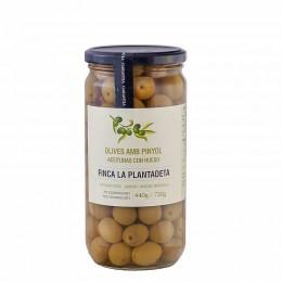 Aceitunas Manzanilla Plantadeta 500gr